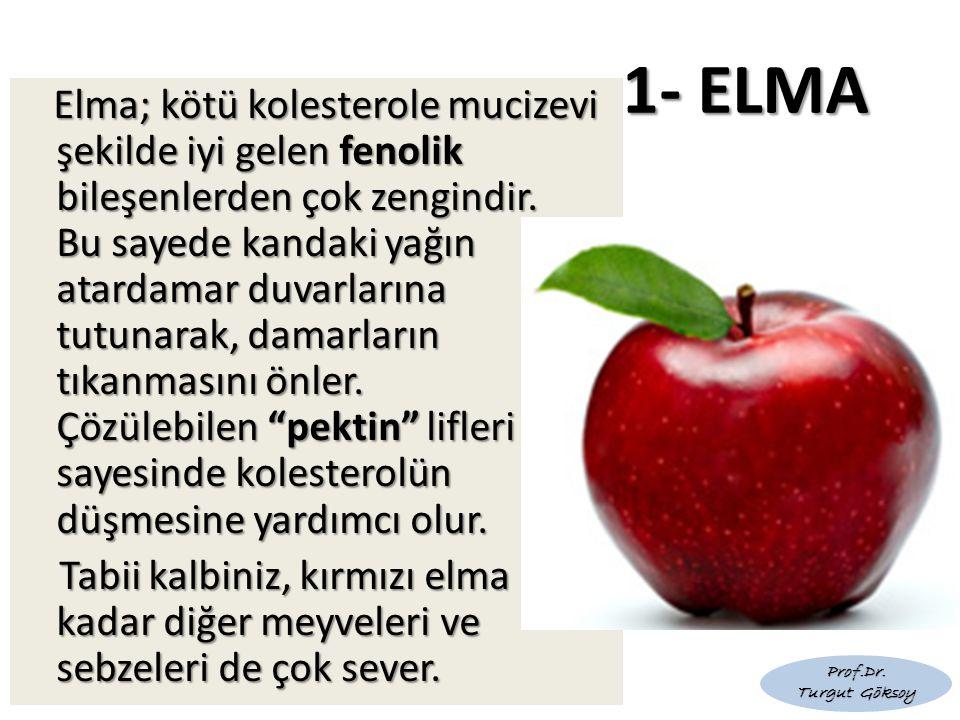 1- ELMA