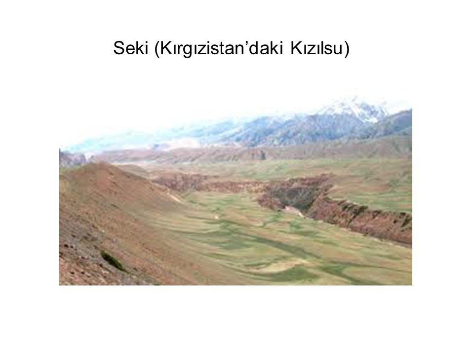 Seki (Kırgızistan'daki Kızılsu)