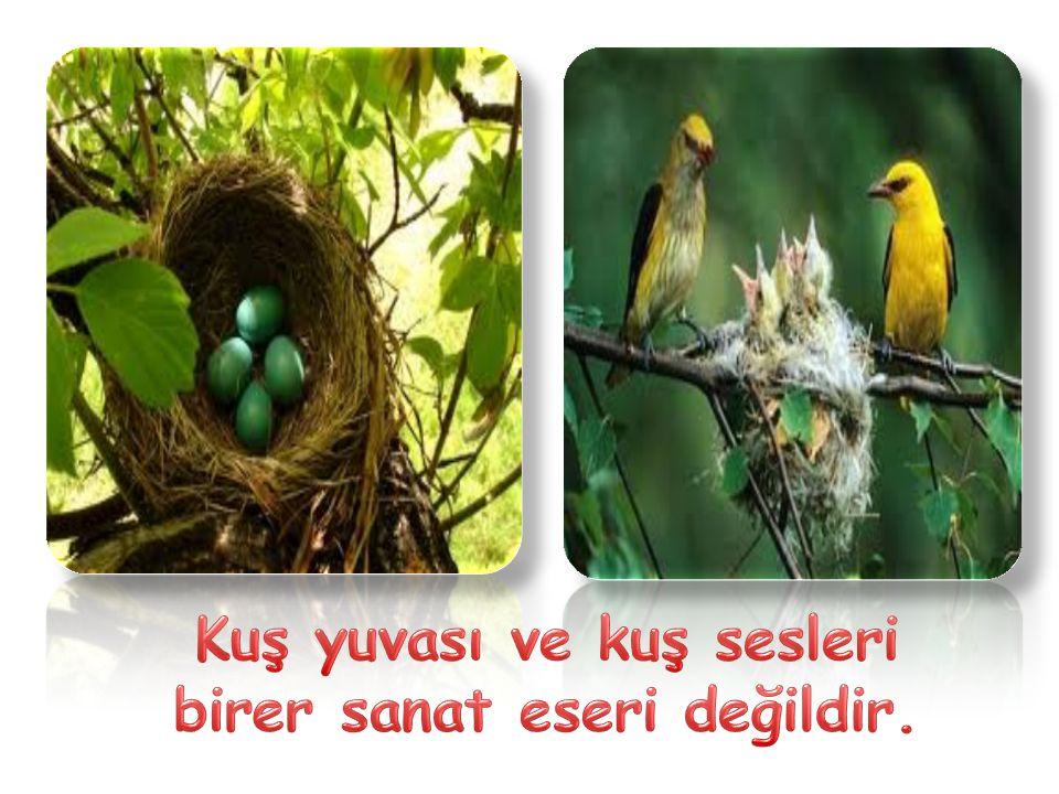 Kuş yuvası ve kuş sesleri birer sanat eseri değildir.