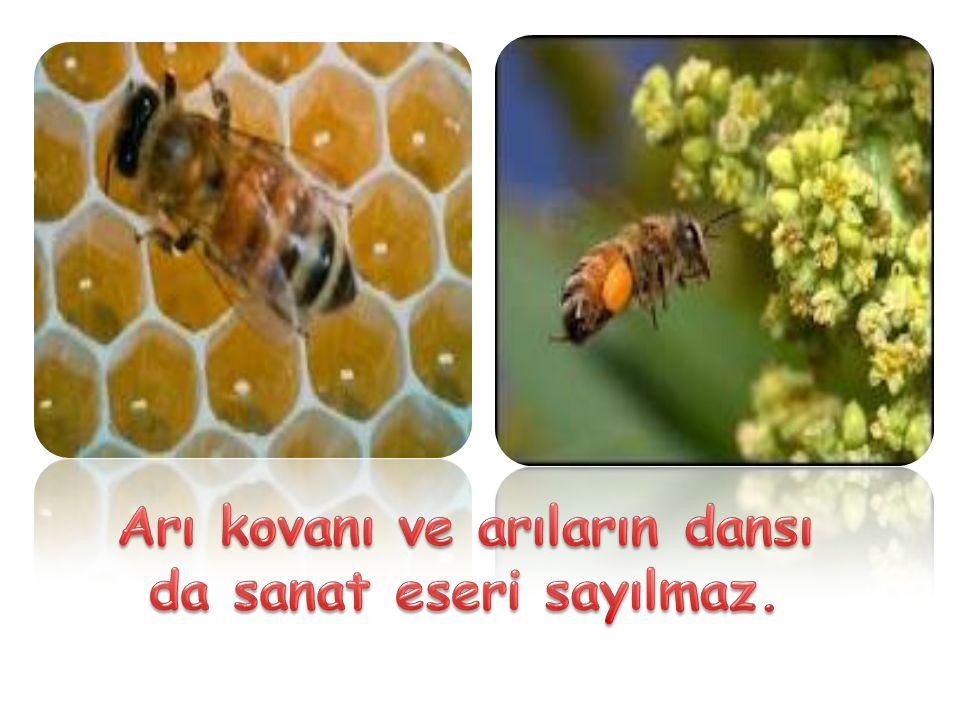 Arı kovanı ve arıların dansı da sanat eseri sayılmaz.