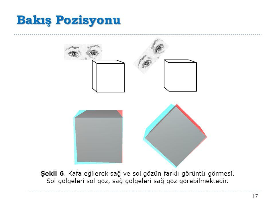 Bakış Pozisyonu Şekil 6. Kafa eğilerek sağ ve sol gözün farklı görüntü görmesi.