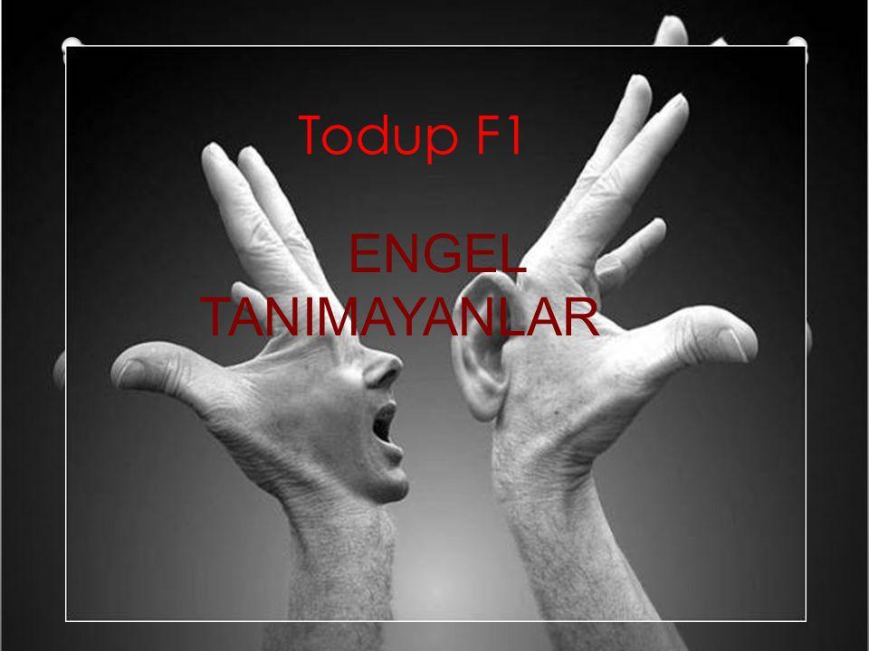 Todup F1 ENGEL TANIMAYANLAR