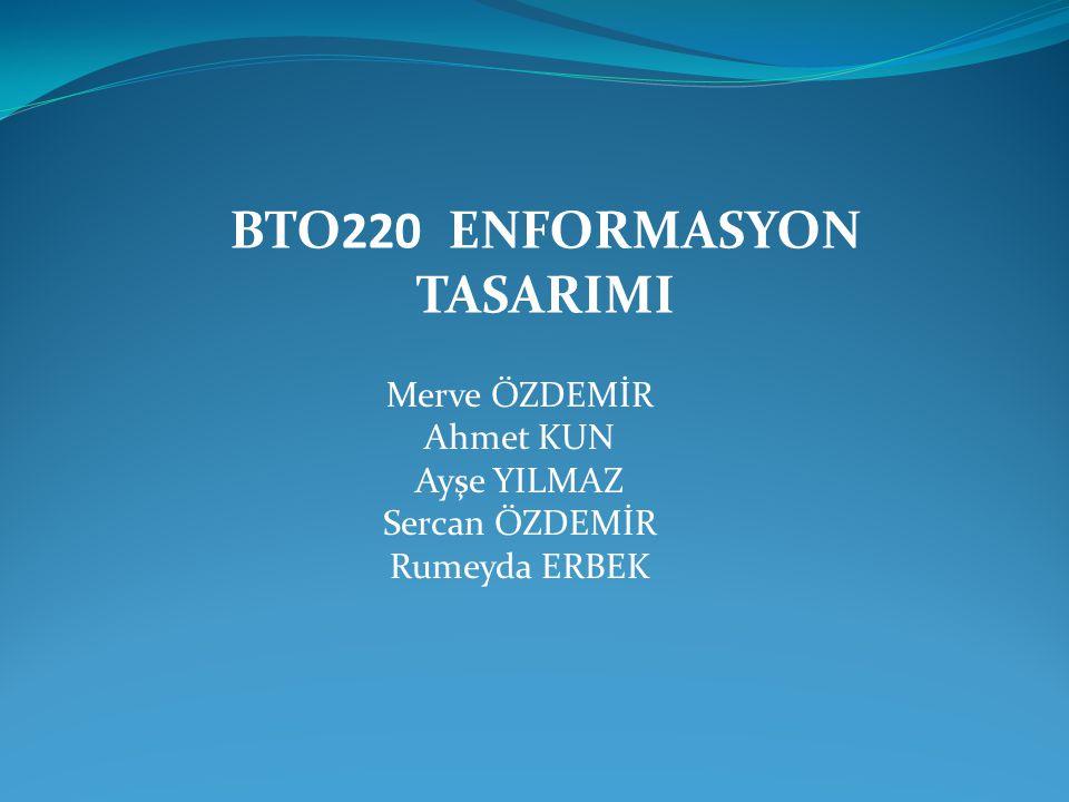 BTO220 ENFORMASYON TASARIMI