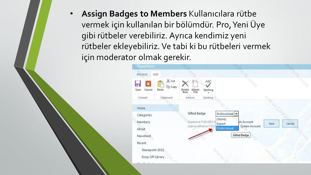 Assign Badges to Members Kullanıcılara rütbe vermek için kullanılan bir bölümdür.
