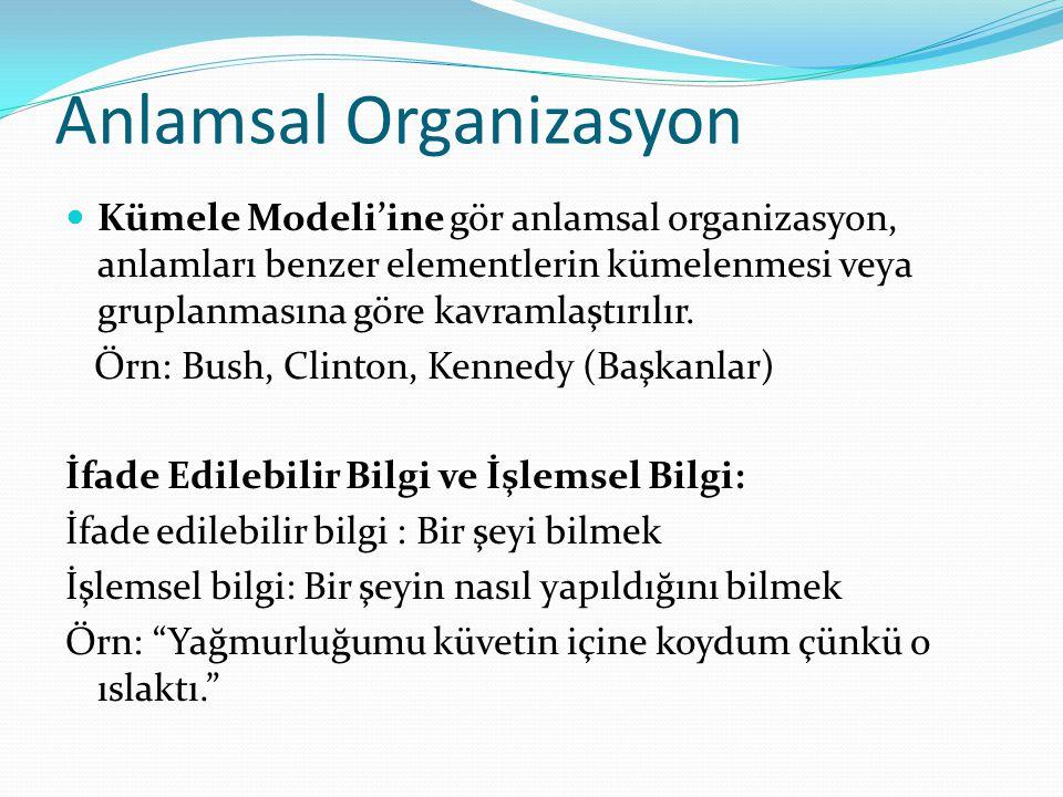 Anlamsal Organizasyon