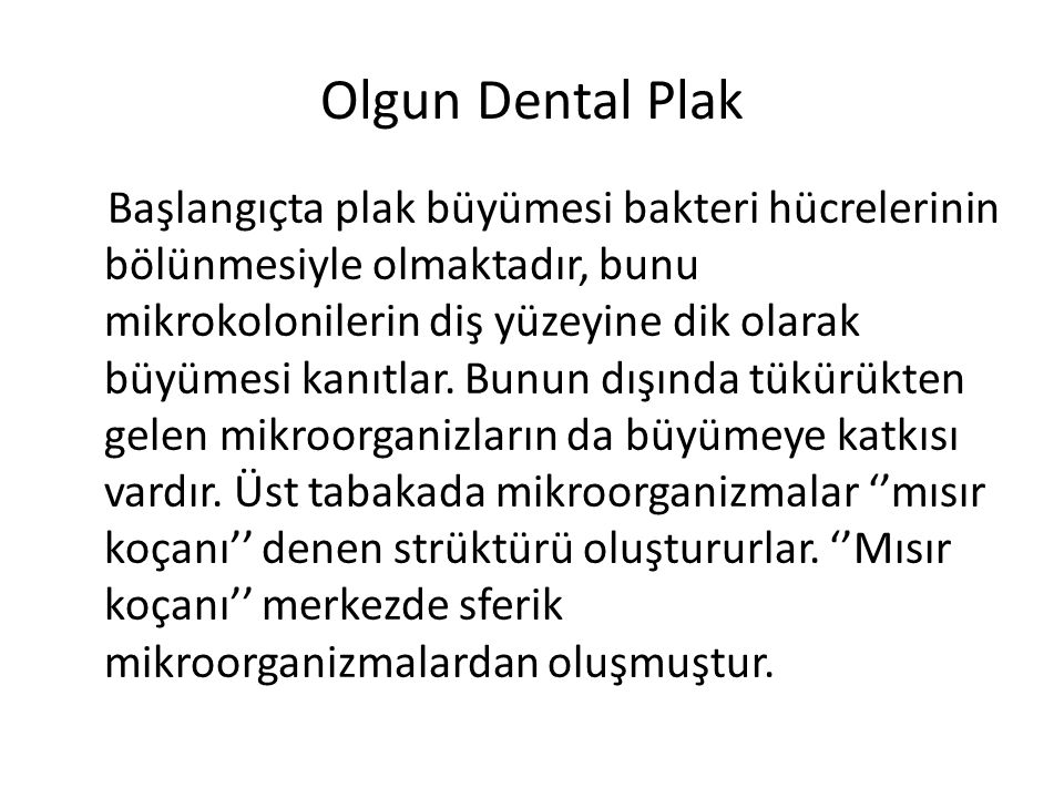 Olgun Dental Plak