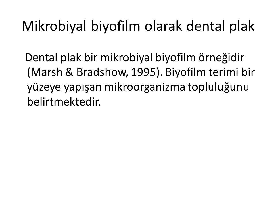 Mikrobiyal biyofilm olarak dental plak