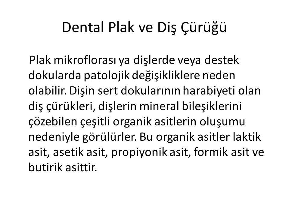 Dental Plak ve Diş Çürüğü