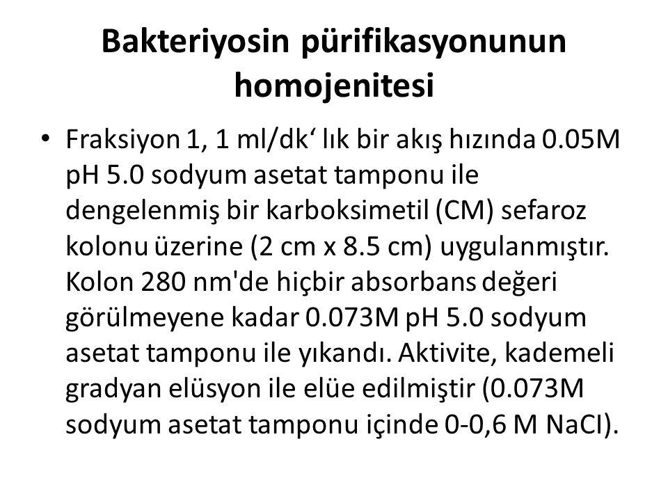 Bakteriyosin pürifikasyonunun homojenitesi