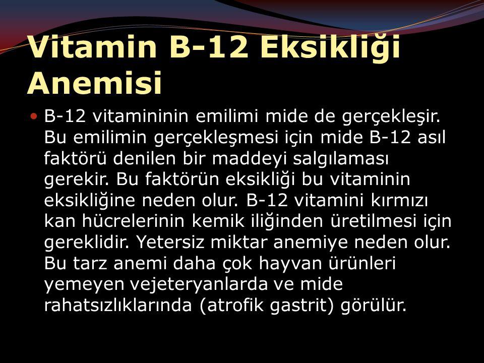 Vitamin B-12 Eksikliği Anemisi