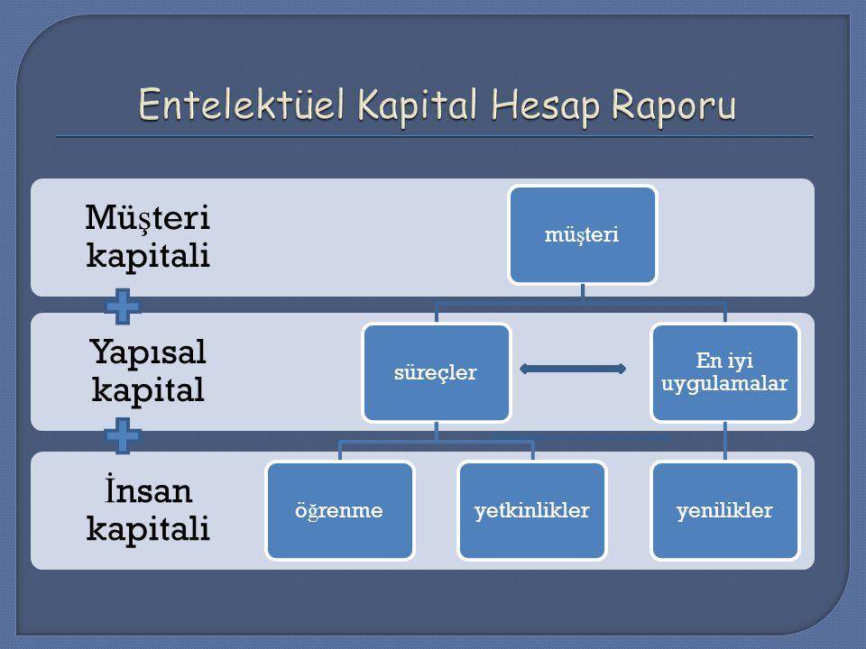 Entelektüel Kapital Hesap Raporu