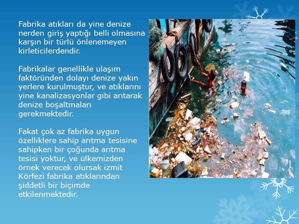 Fabrika atıkları da yine denize nerden giriş yaptığı belli olmasına karşın bir türlü önlenemeyen kirleticilerdendir.