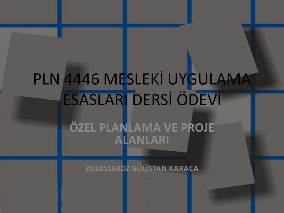PLN 4446 MESLEKİ UYGULAMA ESASLARI DERSİ ÖDEVİ