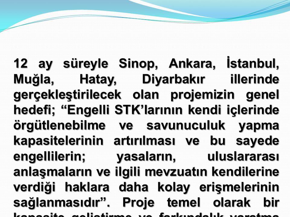 12 ay süreyle Sinop, Ankara, İstanbul, Muğla, Hatay, Diyarbakır illerinde gerçekleştirilecek olan projemizin genel hedefi; Engelli STK'larının kendi içlerinde örgütlenebilme ve savunuculuk yapma kapasitelerinin artırılması ve bu sayede engellilerin; yasaların, uluslararası anlaşmaların ve ilgili mevzuatın kendilerine verdiği haklara daha kolay erişmelerinin sağlanmasıdır .