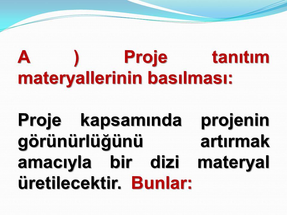 A ) Proje tanıtım materyallerinin basılması: