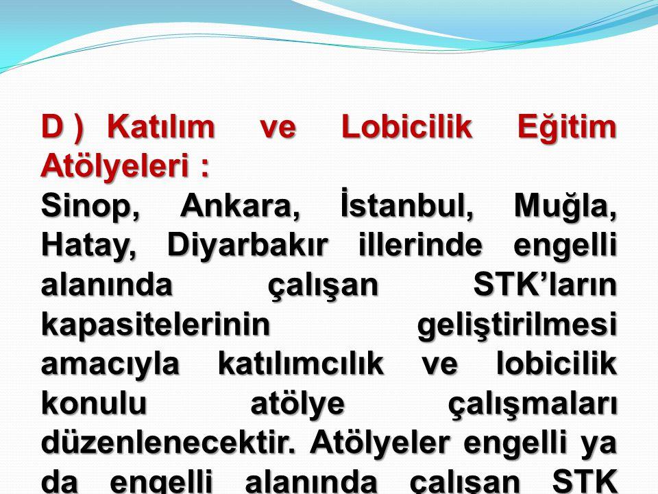 D ) Katılım ve Lobicilik Eğitim Atölyeleri :