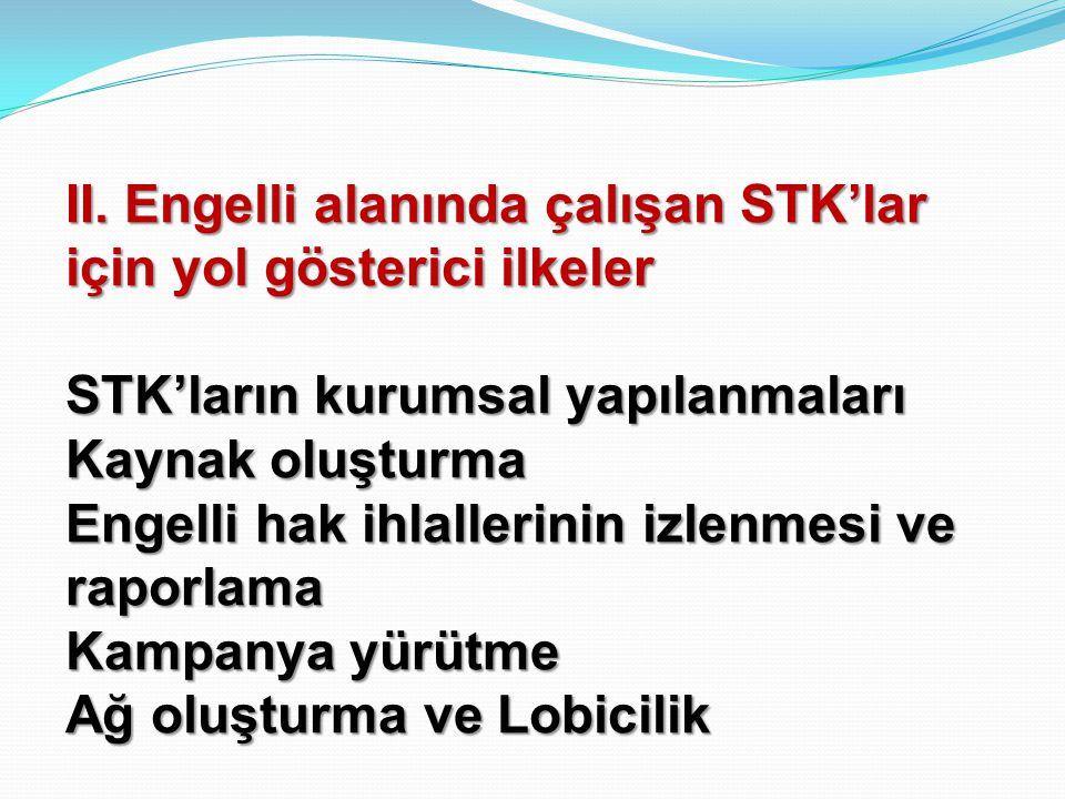 II. Engelli alanında çalışan STK'lar için yol gösterici ilkeler