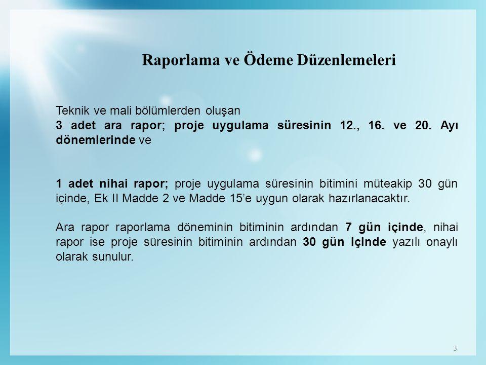 Raporlama ve Ödeme Düzenlemeleri
