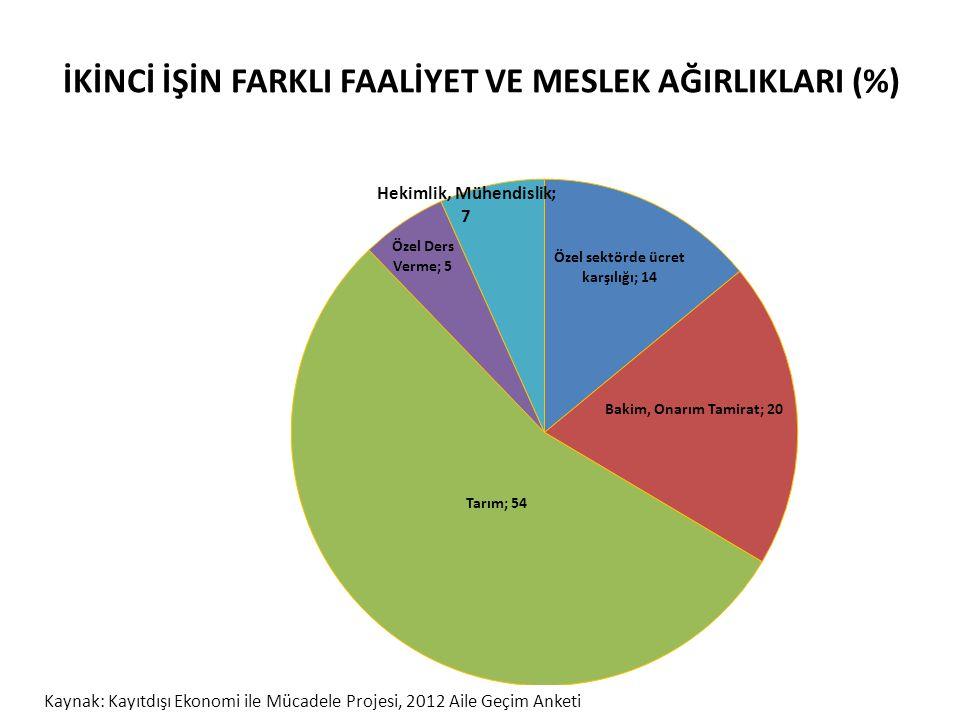 İKİNCİ İŞİN FARKLI FAALİYET VE MESLEK AĞIRLIKLARI (%)