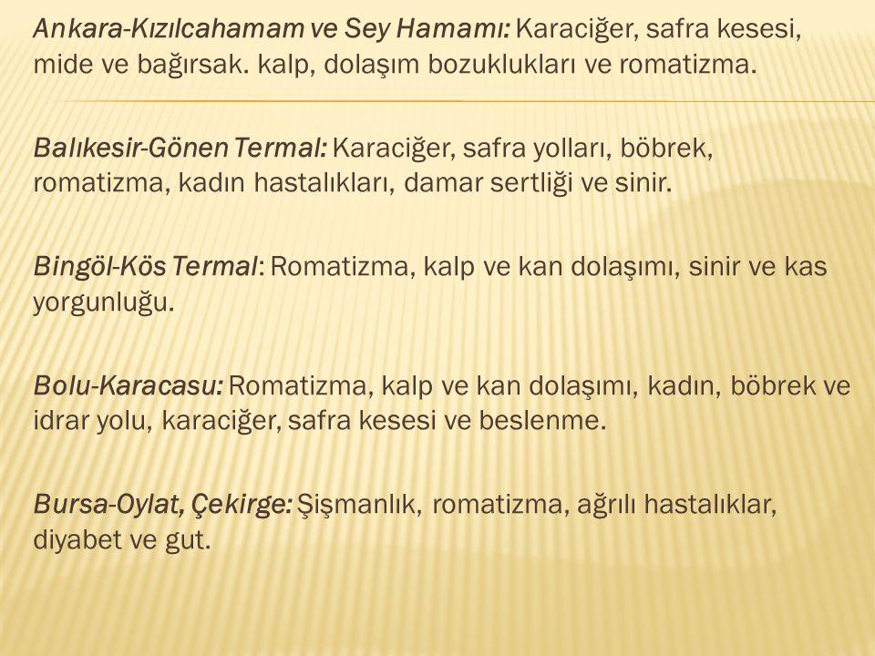 Ankara-Kızılcahamam ve Sey Hamamı: Karaciğer, safra kesesi, mide ve bağırsak. kalp, dolaşım bozuklukları ve romatizma.