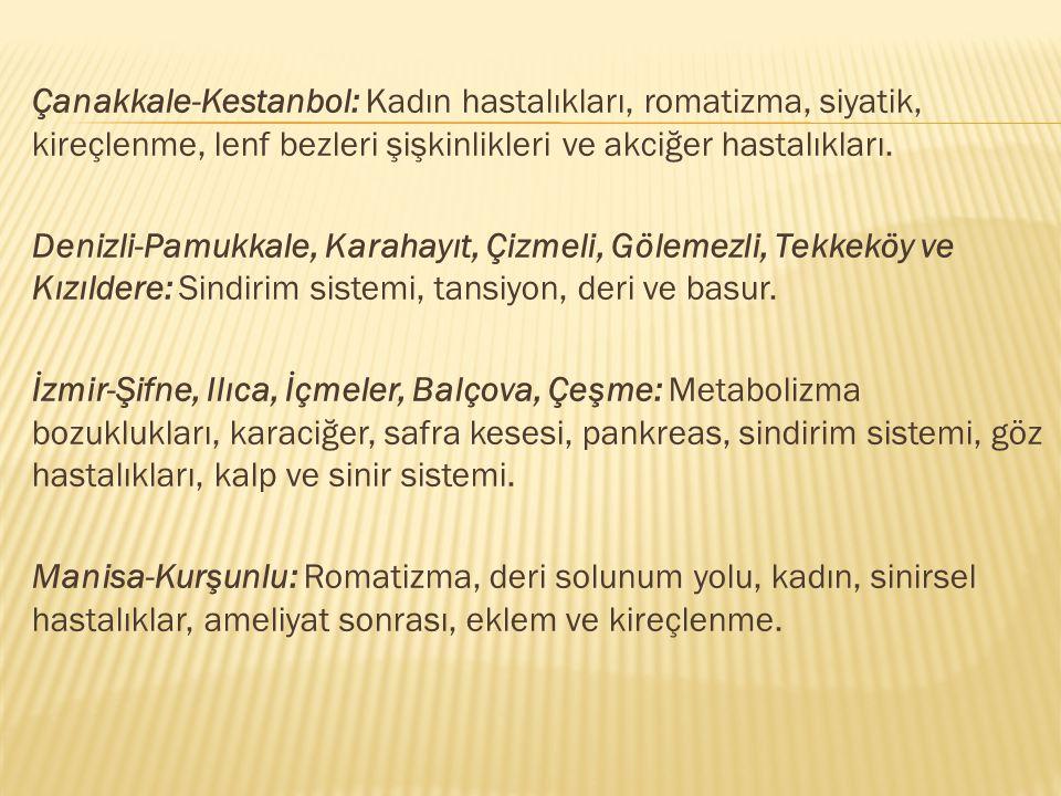 Çanakkale-Kestanbol: Kadın hastalıkları, romatizma, siyatik, kireçlenme, lenf bezleri şişkinlikleri ve akciğer hastalıkları.