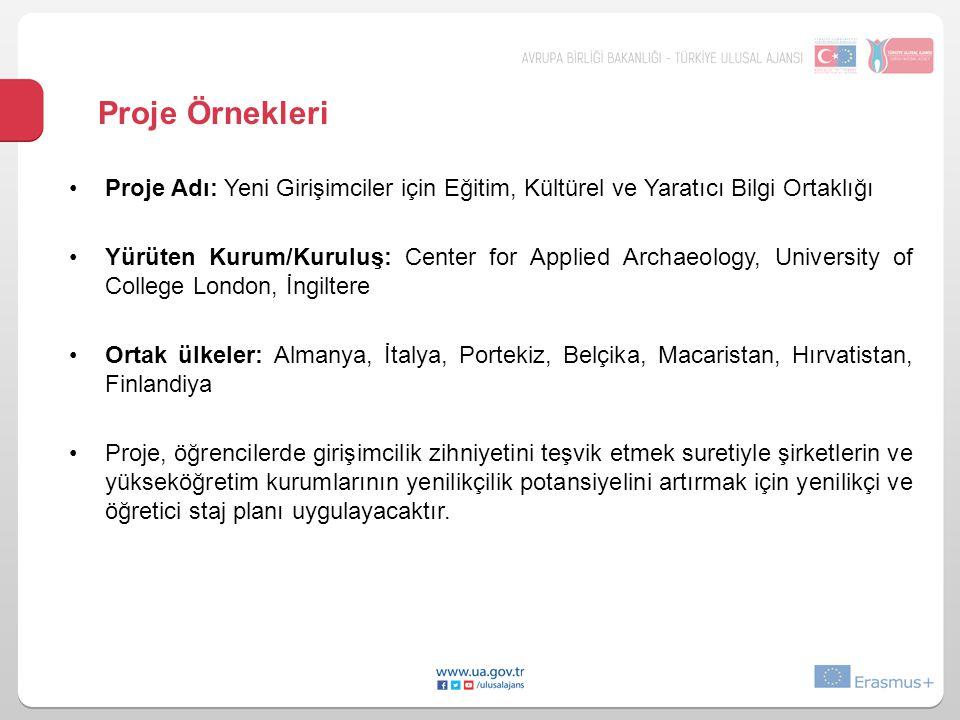Proje Örnekleri Proje Adı: Yeni Girişimciler için Eğitim, Kültürel ve Yaratıcı Bilgi Ortaklığı.