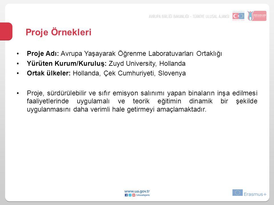 Proje Örnekleri Proje Adı: Avrupa Yaşayarak Öğrenme Laboratuvarları Ortaklığı. Yürüten Kurum/Kuruluş: Zuyd University, Hollanda.