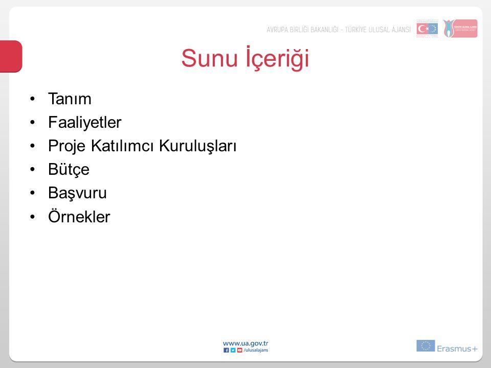 Sunu İçeriği Tanım Faaliyetler Proje Katılımcı Kuruluşları Bütçe