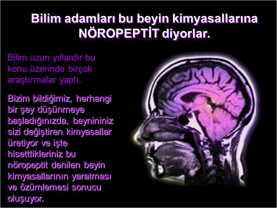 Bilim adamları bu beyin kimyasallarına NÖROPEPTİT diyorlar.