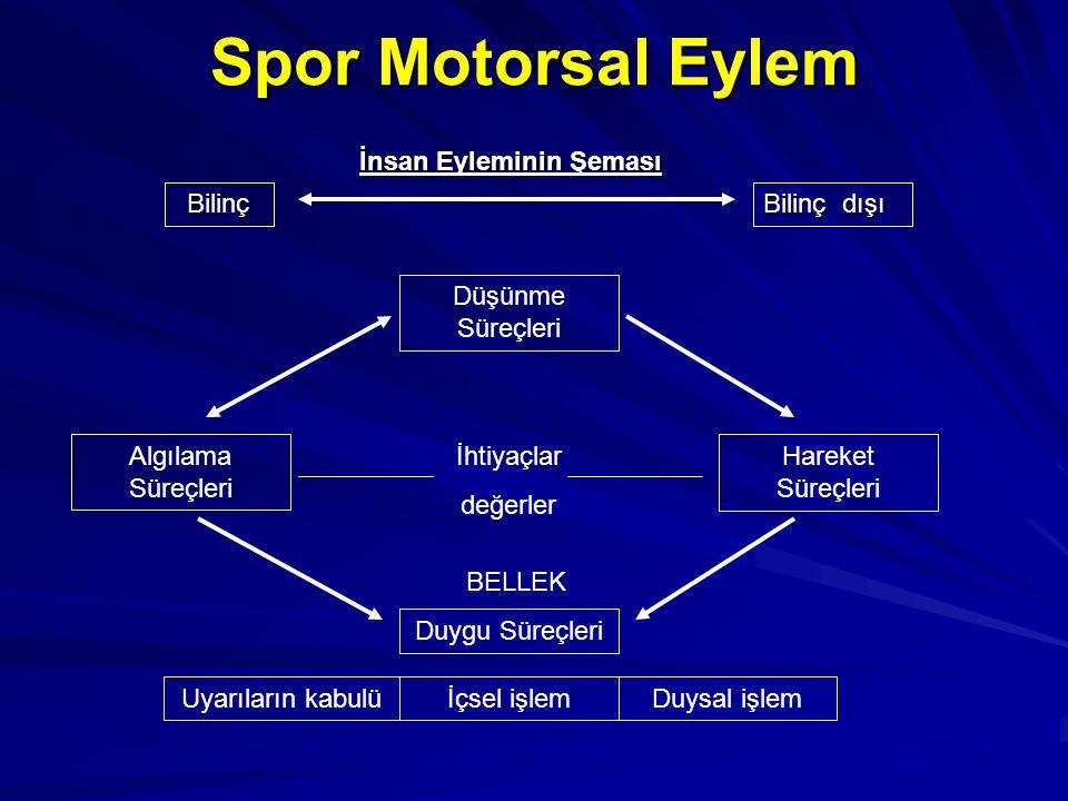 Spor Motorsal Eylem Düşünme Süreçleri Algılama Süreçleri