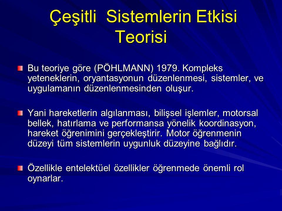 Çeşitli Sistemlerin Etkisi Teorisi