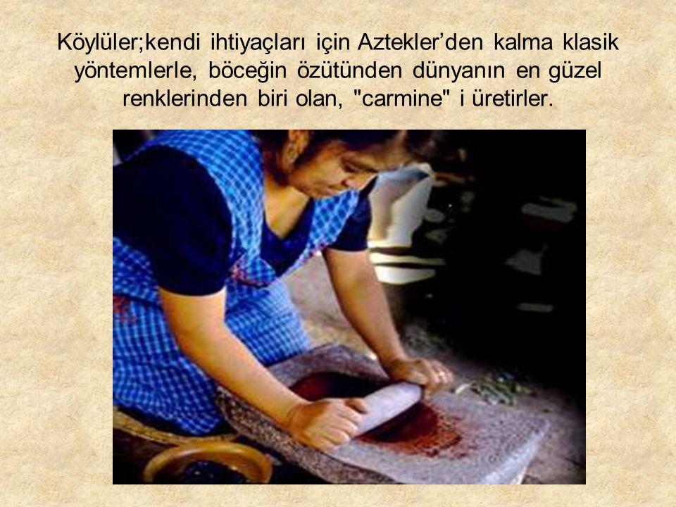 Köylüler;kendi ihtiyaçları için Aztekler'den kalma klasik yöntemlerle, böceğin özütünden dünyanın en güzel renklerinden biri olan, carmine i üretirler.