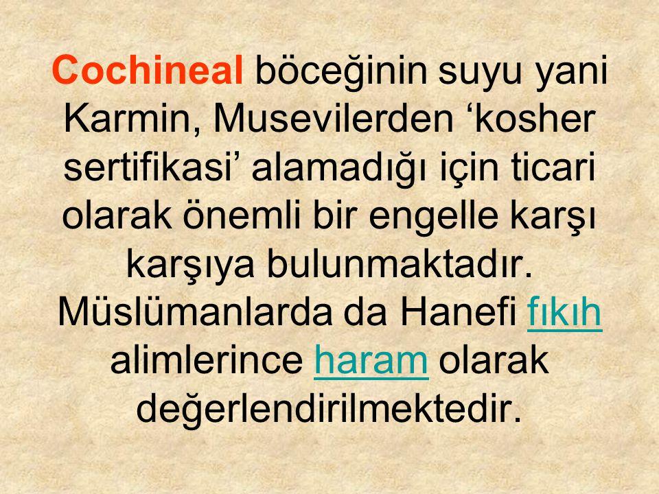 Cochineal böceğinin suyu yani Karmin, Musevilerden 'kosher sertifikasi' alamadığı için ticari olarak önemli bir engelle karşı karşıya bulunmaktadır.