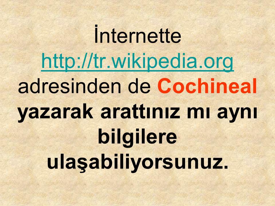 İnternette http://tr. wikipedia