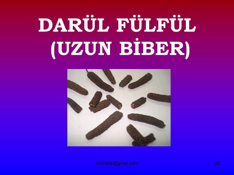 DARÜL FÜLFÜL (UZUN BİBER)