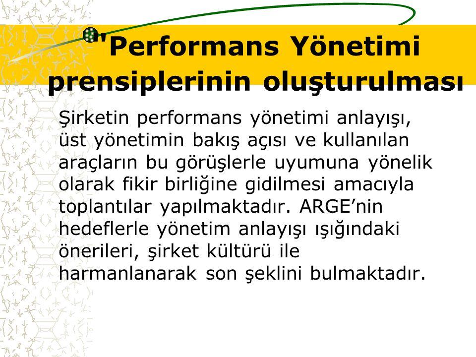 Performans Yönetimi prensiplerinin oluşturulması