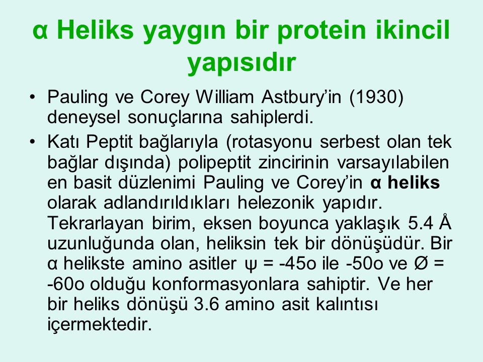 α Heliks yaygın bir protein ikincil yapısıdır