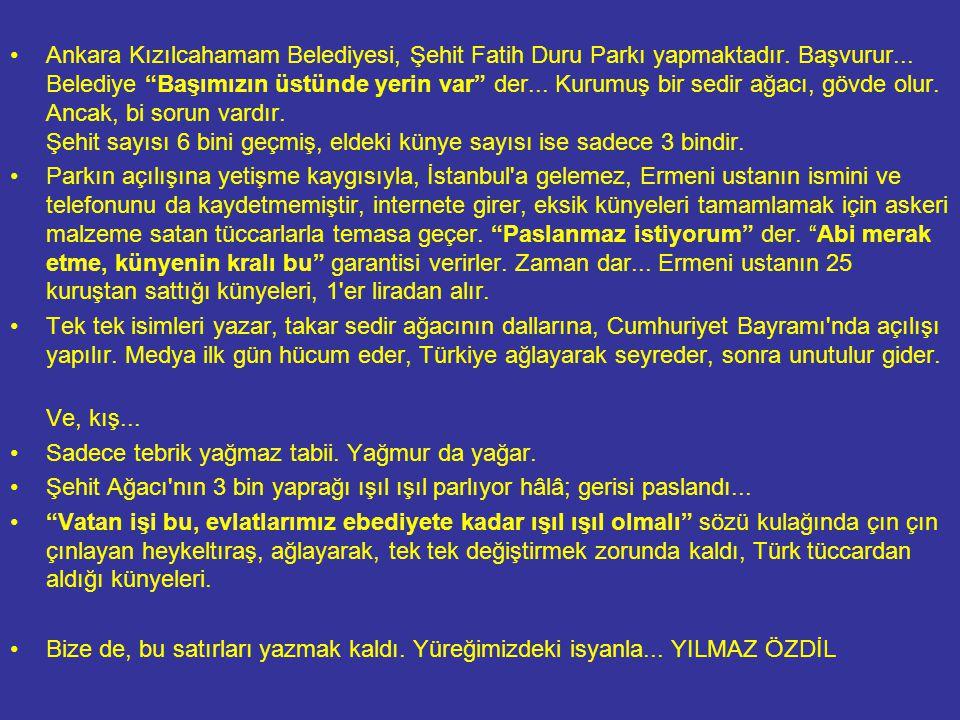 Ankara Kızılcahamam Belediyesi, Şehit Fatih Duru Parkı yapmaktadır