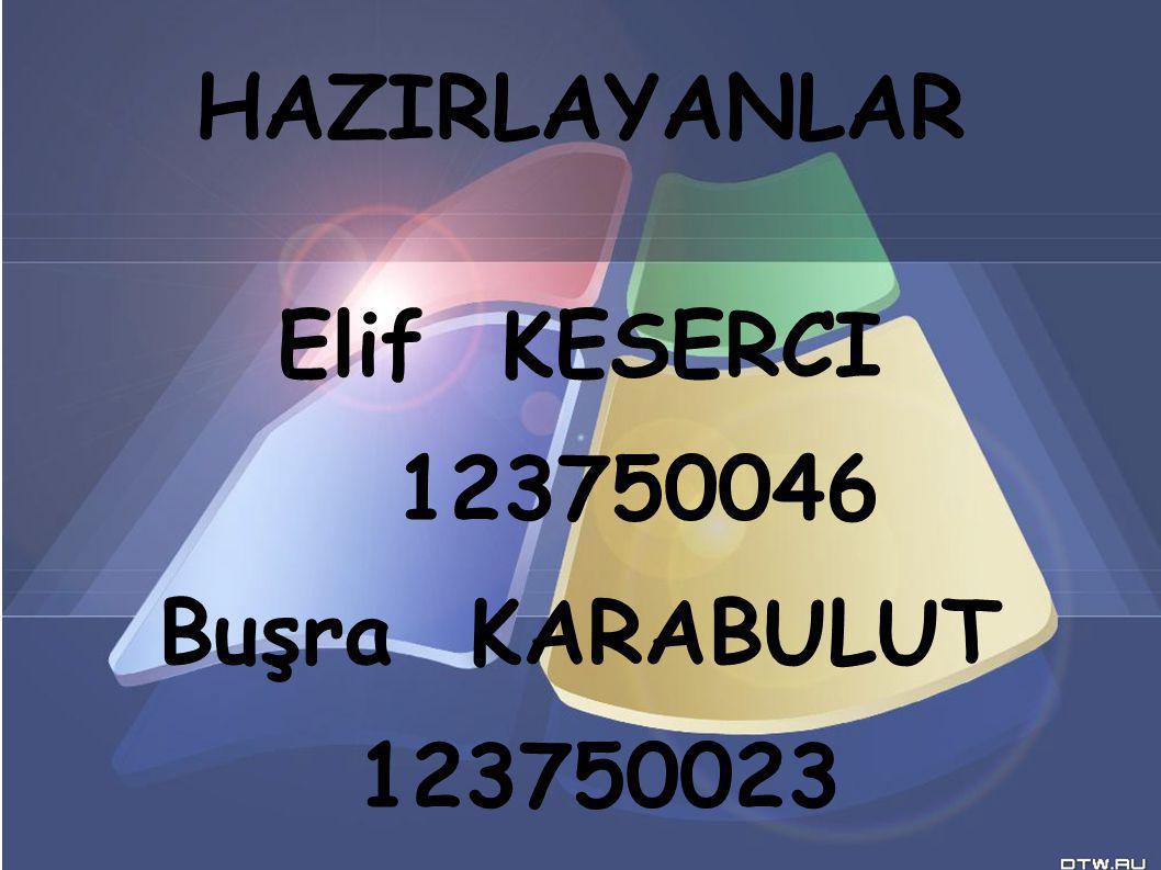HAZIRLAYANLAR Elif KESERCI 123750046 Buşra KARABULUT 123750023