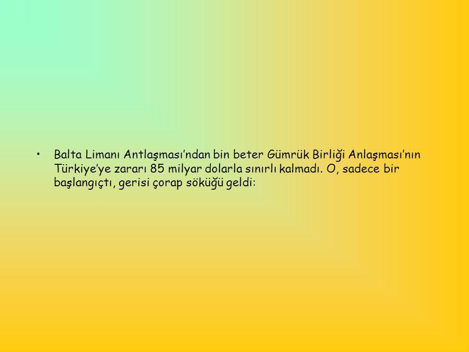 Balta Limanı Antlaşması'ndan bin beter Gümrük Birliği Anlaşması'nın Türkiye'ye zararı 85 milyar dolarla sınırlı kalmadı.