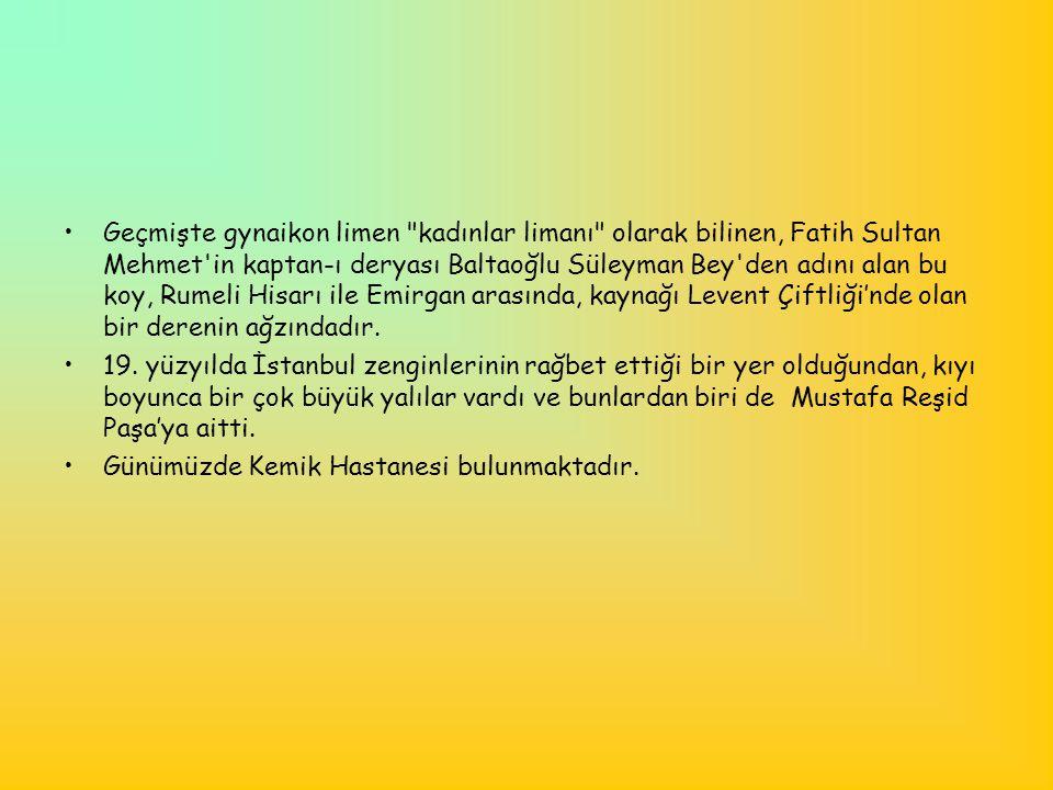 Geçmişte gynaikon limen kadınlar limanı olarak bilinen, Fatih Sultan Mehmet in kaptan-ı deryası Baltaoğlu Süleyman Bey den adını alan bu koy, Rumeli Hisarı ile Emirgan arasında, kaynağı Levent Çiftliği'nde olan bir derenin ağzındadır.