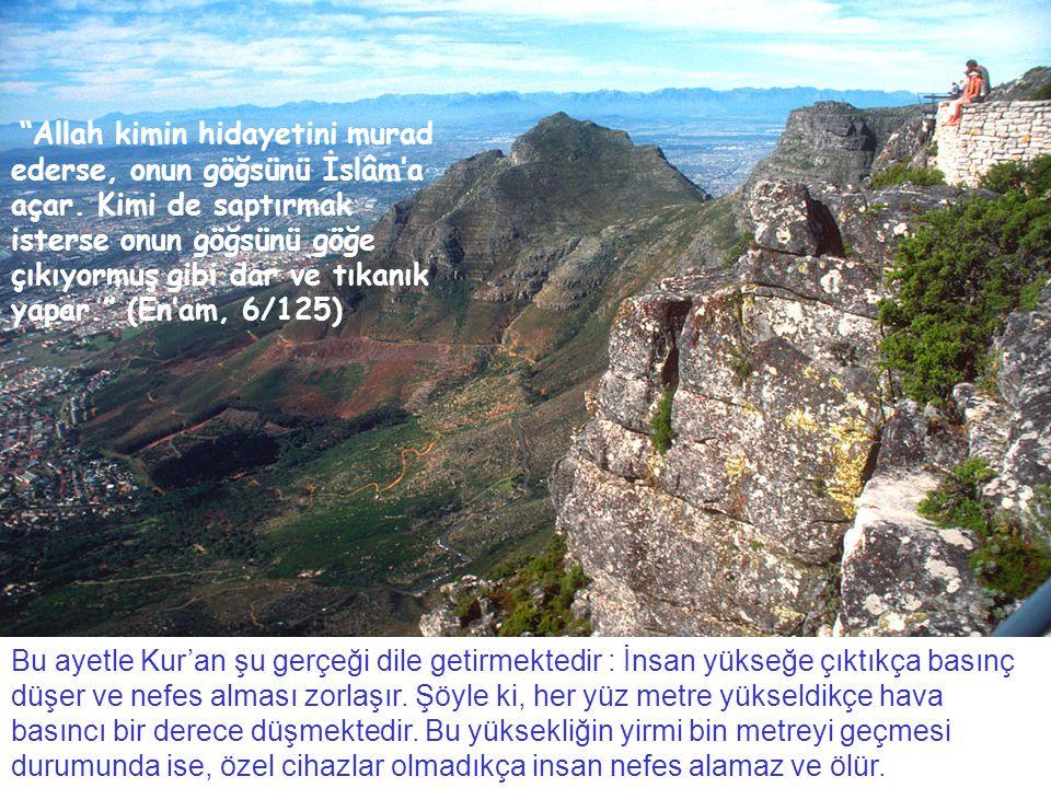 Allah kimin hidayetini murad ederse, onun göğsünü İslâm'a açar