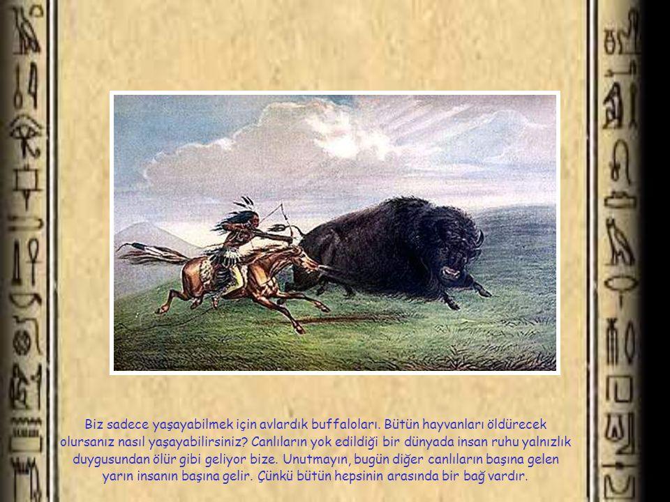 Biz sadece yaşayabilmek için avlardık buffaloları