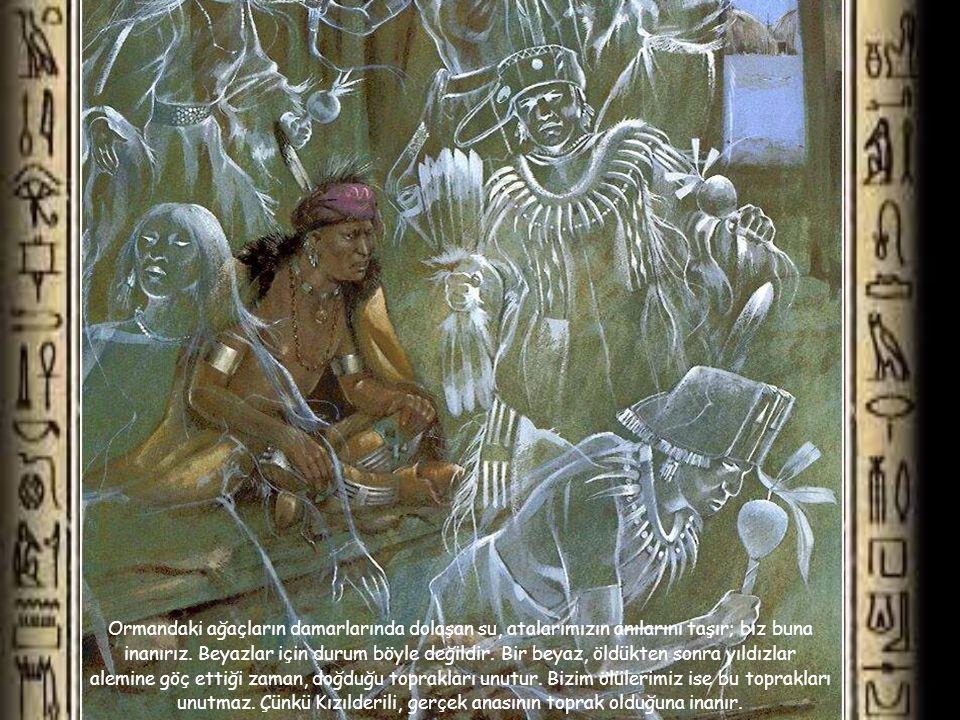 Ormandaki ağaçların damarlarında dolaşan su, atalarımızın anılarını taşır; biz buna inanırız.