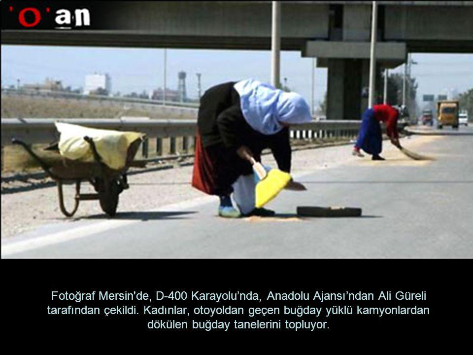 Fotoğraf Mersin de, D-400 Karayolu'nda, Anadolu Ajansı'ndan Ali Güreli tarafından çekildi.