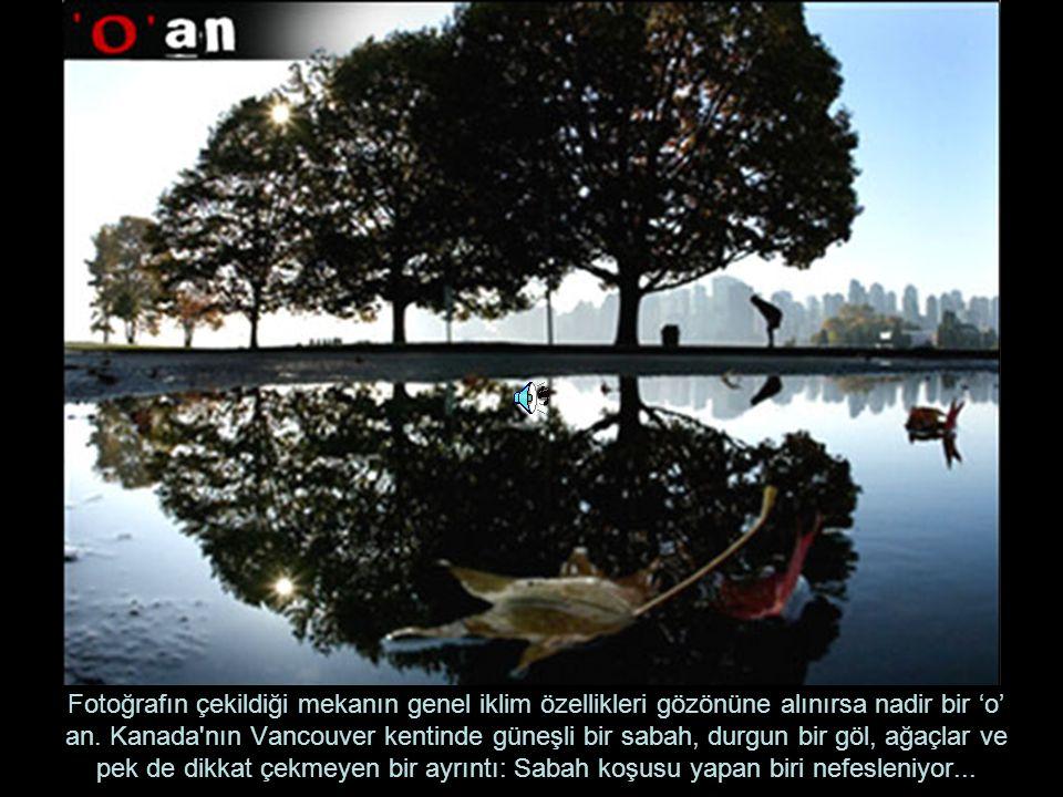 Fotoğrafın çekildiği mekanın genel iklim özellikleri gözönüne alınırsa nadir bir 'o' an.