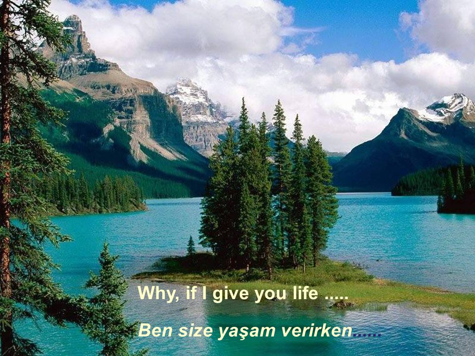 Why, if I give you life ..... Ben size yaşam verirken......