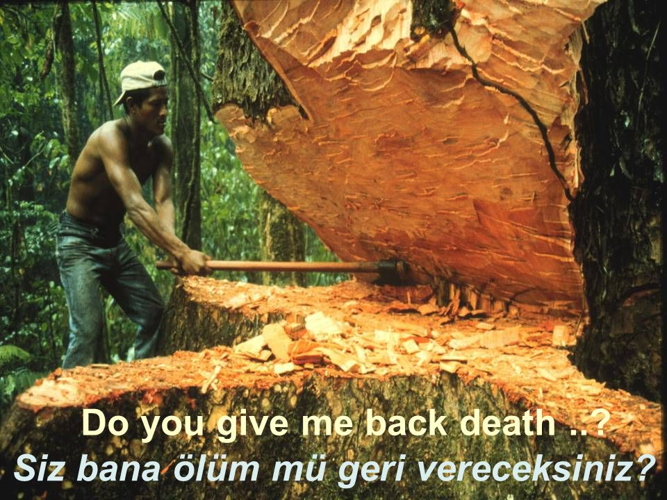 Do you give me back death .. Siz bana ölüm mü geri vereceksiniz