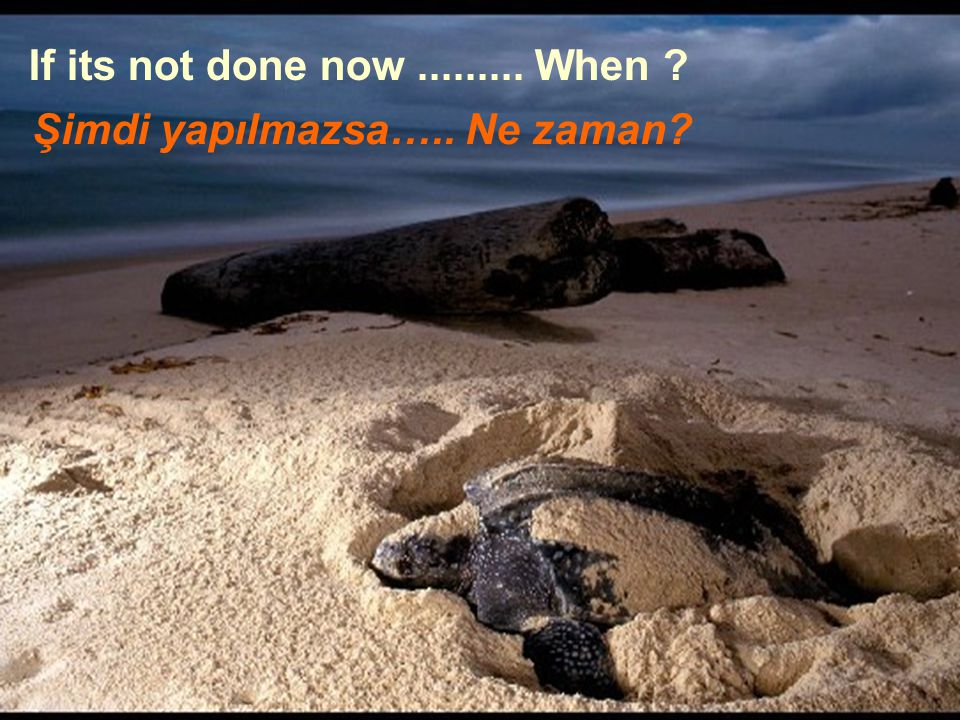 If its not done now When Şimdi yapılmazsa….. Ne zaman