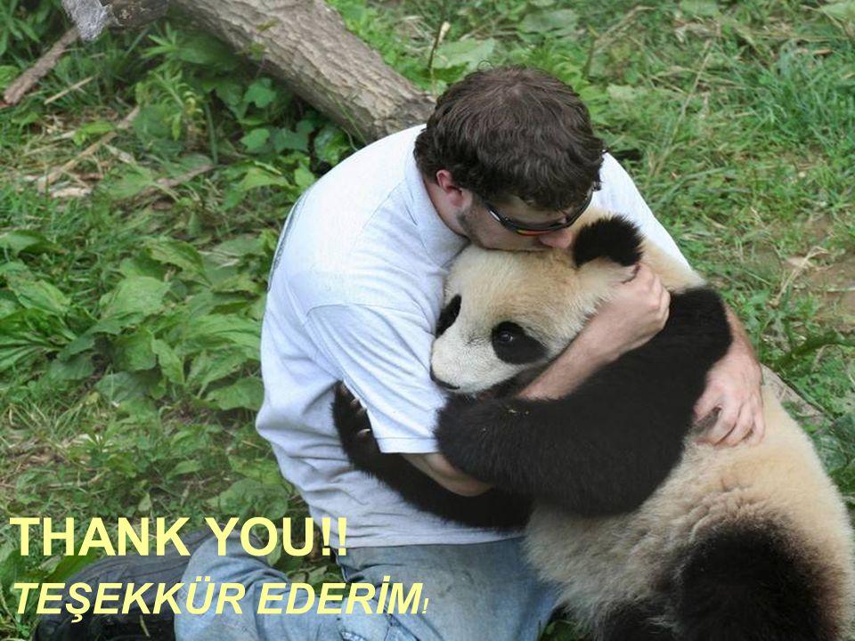 THANK YOU!! TEŞEKKÜR EDERİM!
